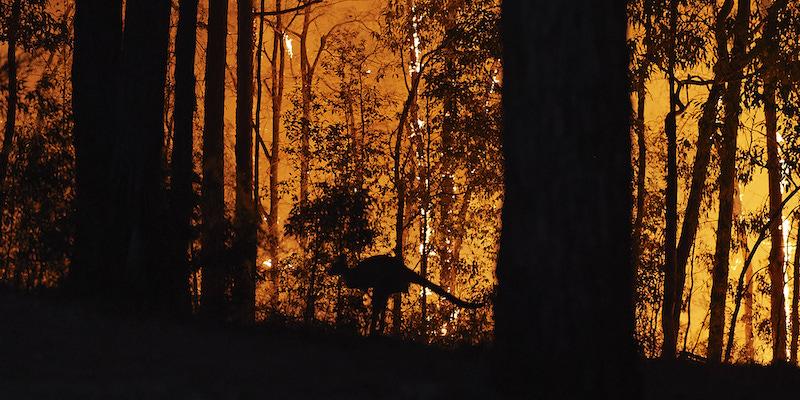 trasferirsi in australia incendio